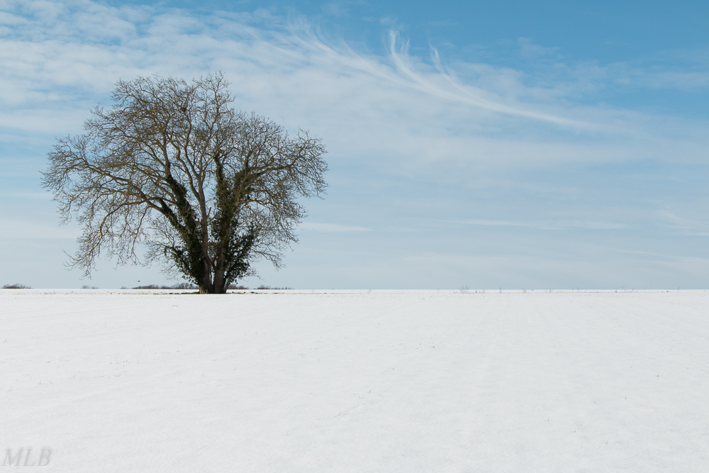 Février neige mlb42